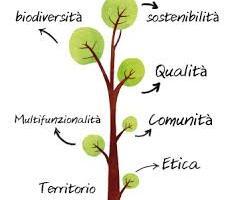 agricoltura sociale1
