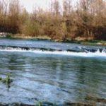 Tutela del fiume Volturno