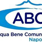 Gestione pubblica del servizio idrico integrato
