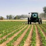 Rilancio del settore agricolo e zootecnico