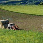 Agricoltura, il NOI meglio dell'IO